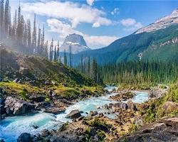 Canadian park 1