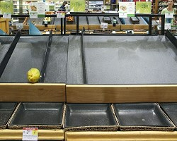 Empty grocery store 1