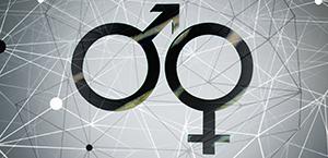Gender diversity 300 by 145