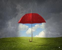 Umbrella wide article small