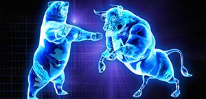 Bear and bull 300