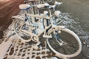 Cykel snow KL 300x200