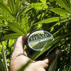 Cannabis cream product