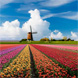Nederland scoort bovengemiddeld voor fondsbeleggers