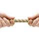 Actief versus passief: vlak actieve bedrijfsobligatiefondsen niet uit