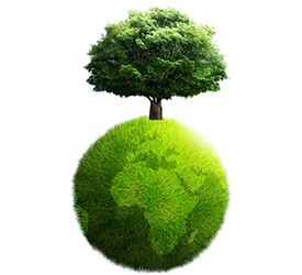 Top 5 Aandelen Sector Ecologie: duidelijk groeiende instroom duurzaam beleggen