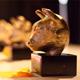 Morningstar wint Gouden Stier voor beste educatieve beleggingsinstelling