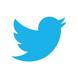 Analyse aandeel Twitter