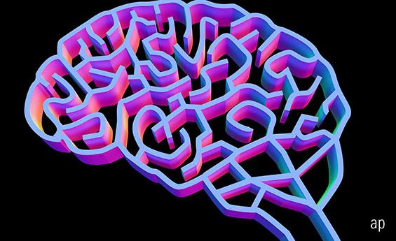 The Investing Brain