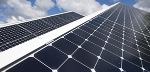 Solar panels 300 by 145