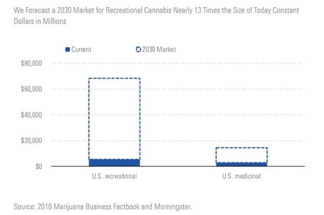 cannabis 2030