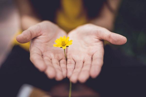 Value: Flower in hand