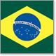 Holly Licensed Brazil