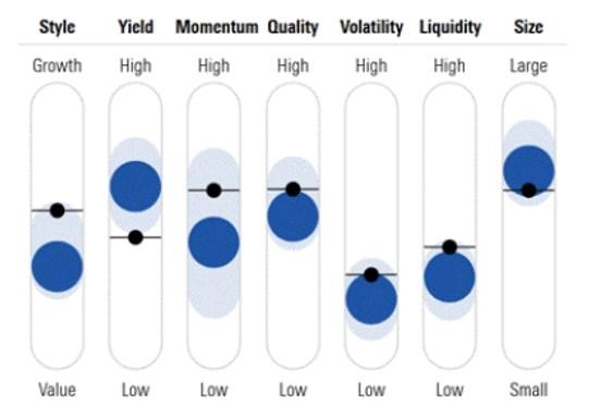 Morningstar Factors Profile