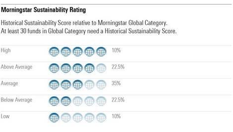 globe rating