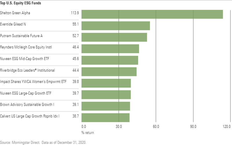 Top U.S. Equity ESG Funds