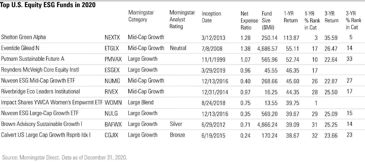 Top U.S. Equity ESG Funds in 2020