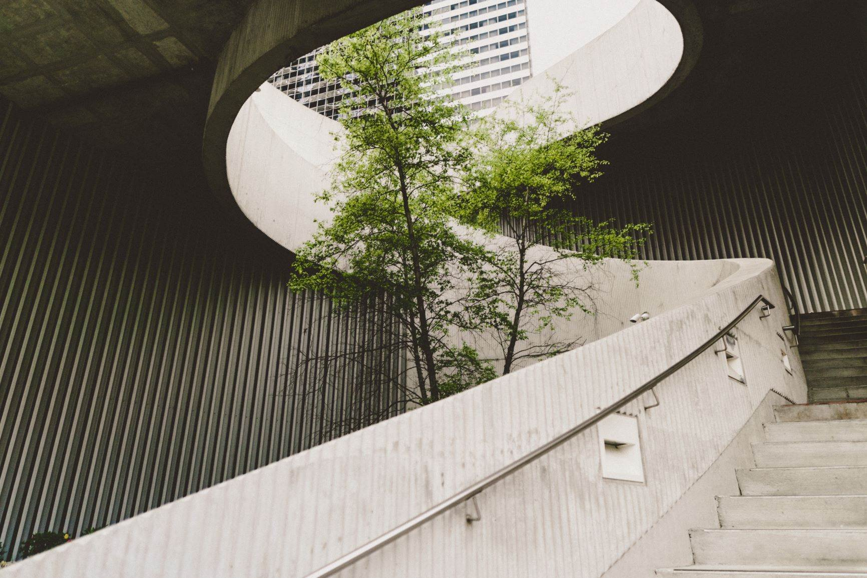 Trees beyond concrete