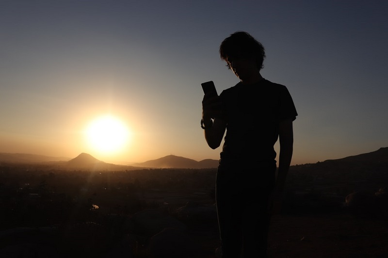 Young adult looking at phone in sun