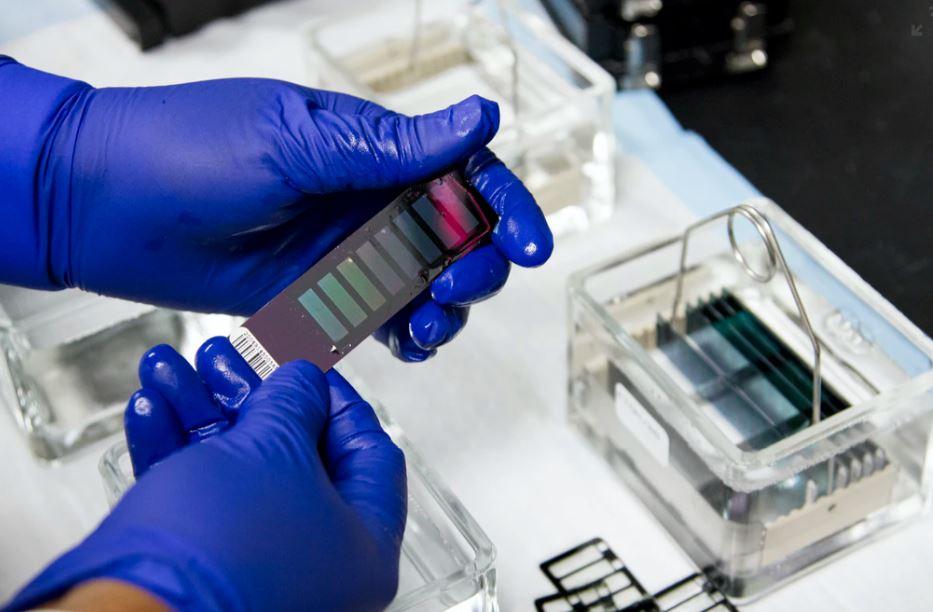 Per il venture capital la biotecnologia non è una moda