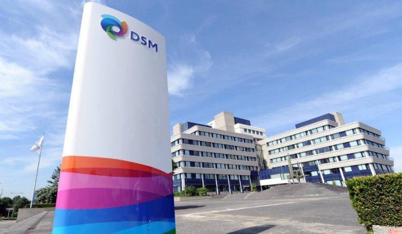 DSM Heerlen