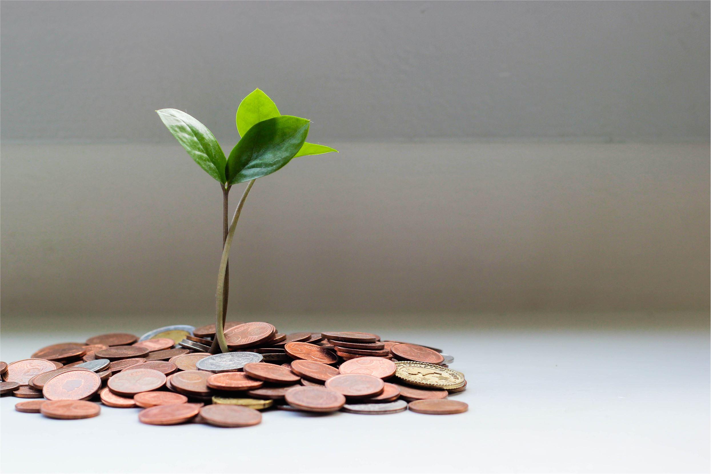 ESG-vennlige fond med best og dårligst avkastning i september