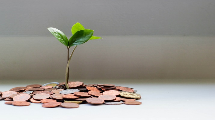 Sustainable Funds' Record-Breaking Year