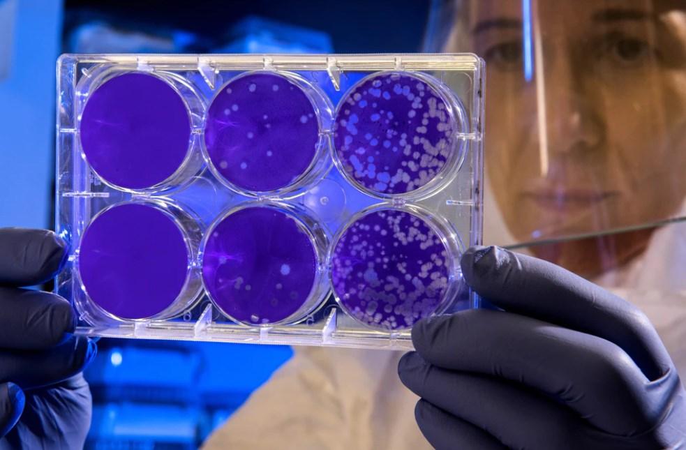 Coronavirus, in Borsa sono a rischio le società di viaggio e del turismo