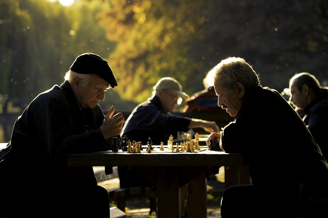 A down-market survival guide for retirees