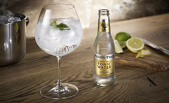 Fevertree tonic mixer, gin, top AIM stocks, fund managers