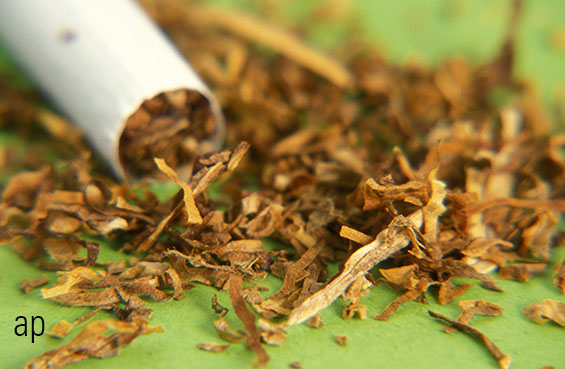 Tobacco stocks divide investors