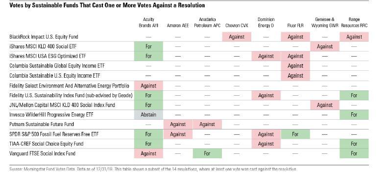 Voto die fondi sostenibili USA in alcune aziende americane